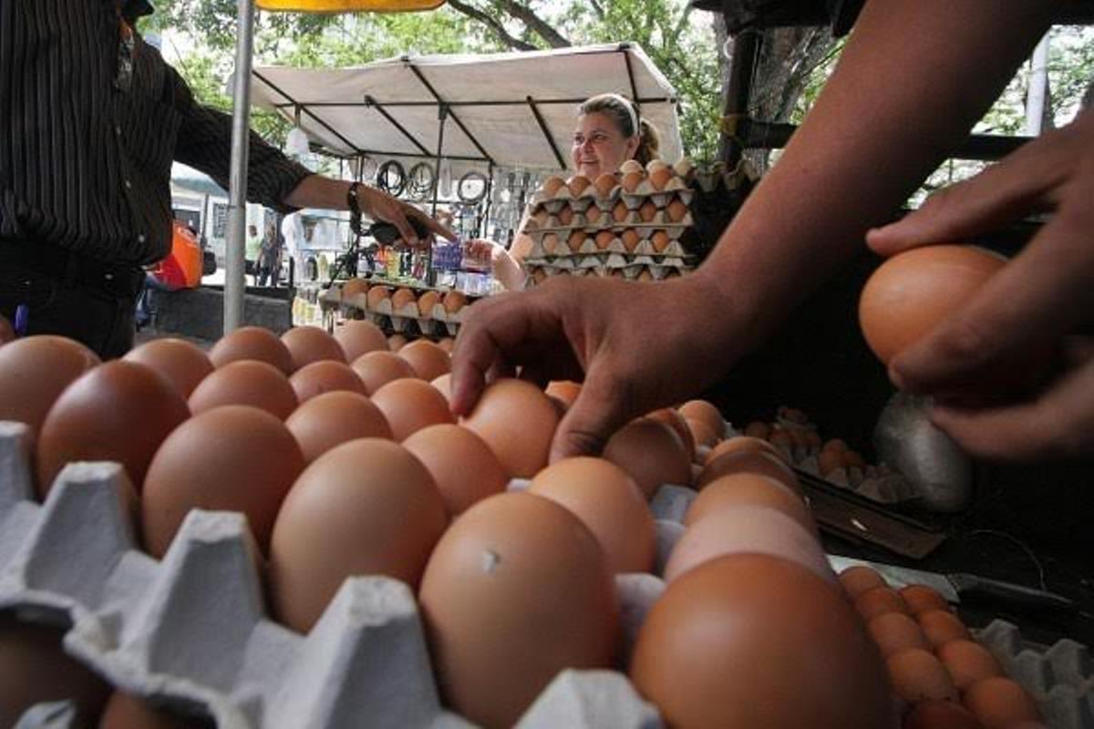 El salario mínimo alcanza para medio cartón de huevos