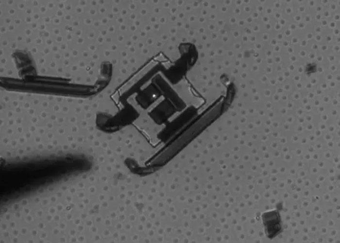 Desarrollan robots del tamaño de un cabello