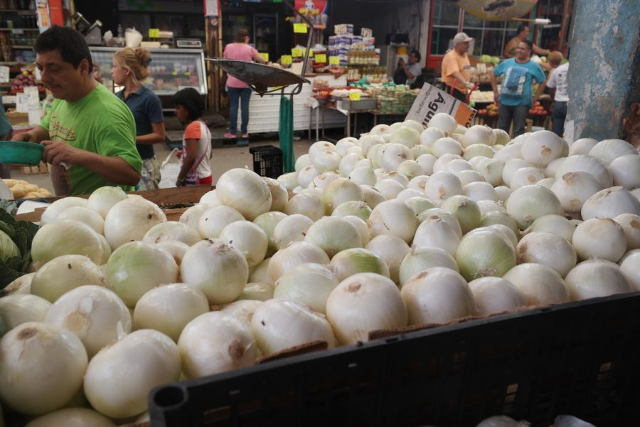 El Salario mínimo se reduce a medio kilo de cebolla en Guàrico