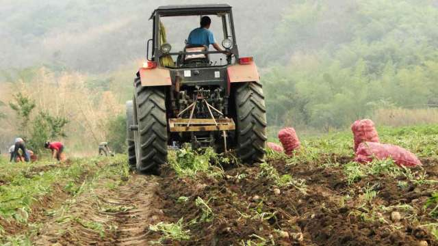 Paparoni: Producción agroalimentaria del país podría oscilar entre un 12% y 15% máximo en el 2021