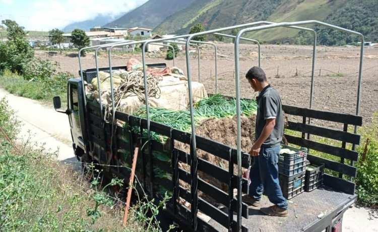 En riesgo 40 toneladas de frutas, verduras y hortalizas por falta de combustible