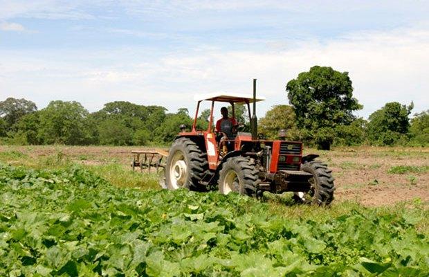 Fedeagro: Necesitamos mover más de 40 mil tractores para garantizar el ciclo de siembra