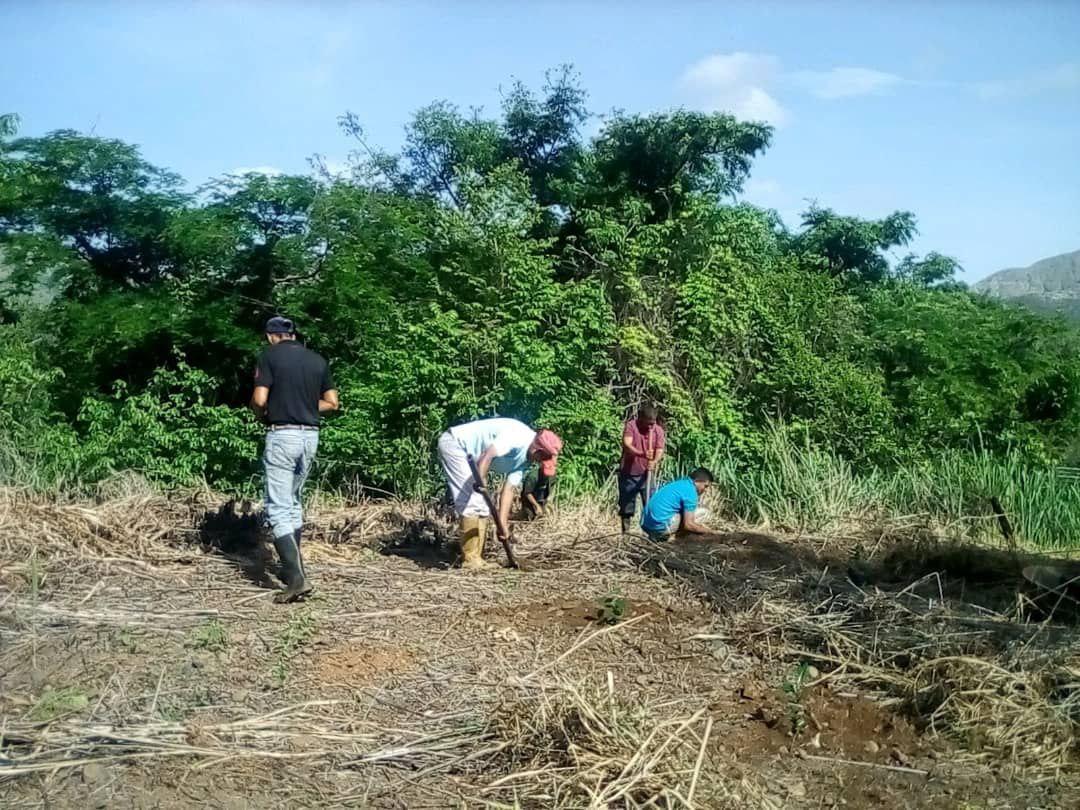 Idessa promueve el desarrollo sostenible e impulso de sistemas agroambientales
